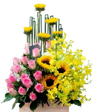 hoa sinh nhật 15