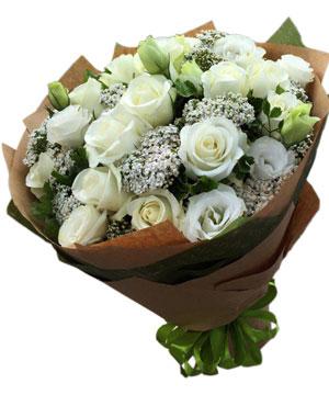 hoa tình yêu hty 92