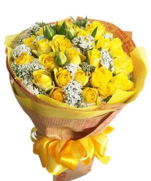 hoa tình yêu hty 95