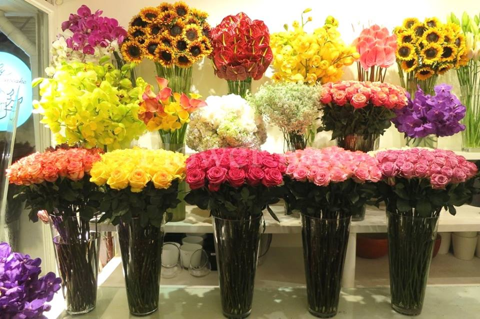 shop hoa tươi tỉnh ninh bình