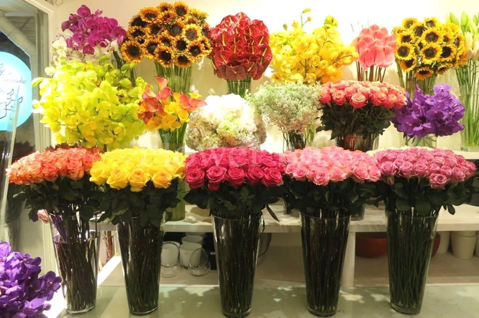 shop hoa tươi tỉnh thái nguyên
