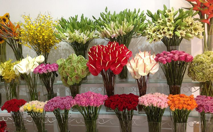 cửa hàng hoa tươi ở hải phòng