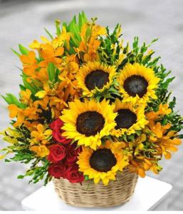 shop hoa tươi tỉnh lâm đồng