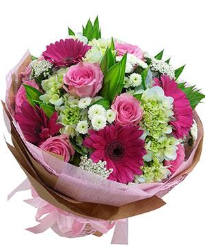 hoa tình yêu hty 100
