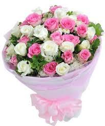 hoa tình yêu hty 98