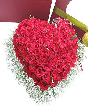 hoa tình yêu 104