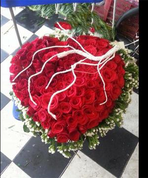 hoa tình yêu hty 105