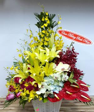 hoa sinh nhật hsn 155