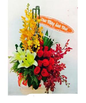 hoa sinh nhật hsn 156
