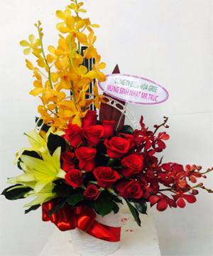 hoa sinh nhật hsn 157