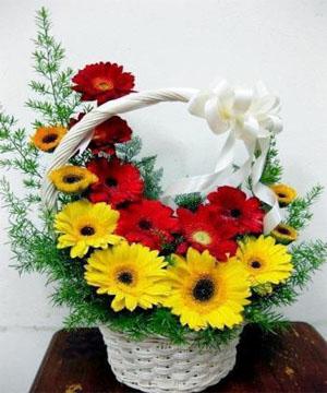 hoa sinh nhật 160