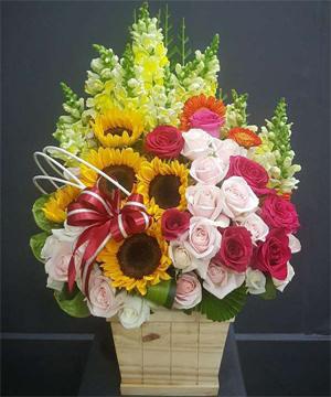 hoa sinh nhật hsn 164