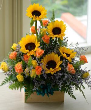 hoa sinh nhật hsn 165