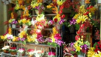 shop hoa tươi quận 2 tphcm
