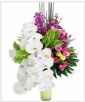 bình hoa tươi bht 13