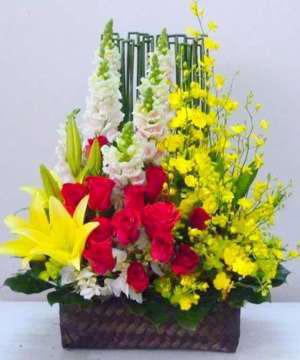 hoa sinh nhật hsn 167