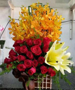 hoa sinh nhật hsn 168