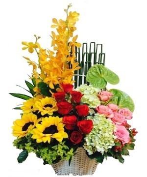 cửa hàng hoa tươi nhà bè