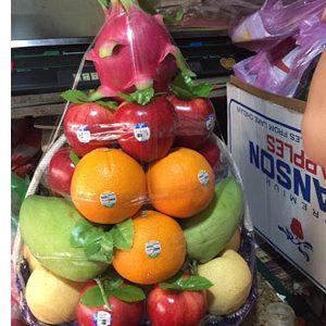 giỏ trái cây gtc 24