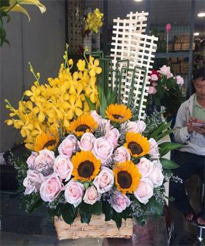 hoa sinh nhật hsn 169