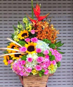 hoa sinh nhật hsn 172