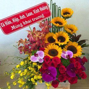hoa sinh nhật hsn 173