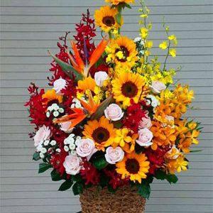hoa sinh nhật hsn 175