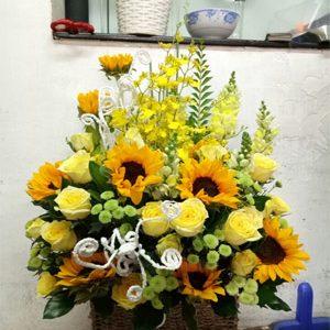 hoa sinh nhật hsn 178