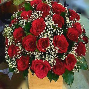 hoa sinh nhật hsn 179