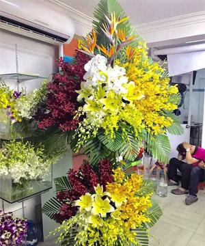 shop hoa tươi quận 2 ở hcm